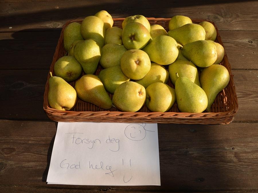 Arrangøren ønsket gjestene velkommen med fruktfat!